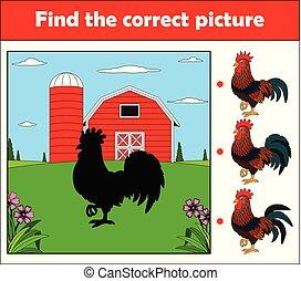 ferme, trouver, coq, jeu, image, children., education, correct