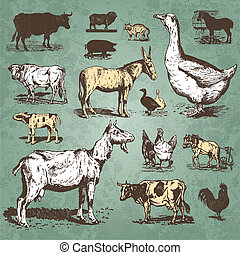 ferme, vendange, ensemble, animaux, (vector)