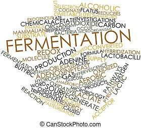 Fermentation - Abstract word cloud for Fermentation with...