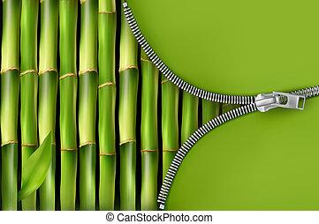 fermeture éclair, bambou, ouvert, fond