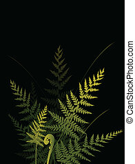 fern background 2