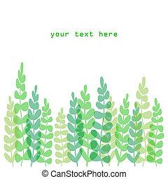 Fern border - Spring or summer border: fern or plant in...