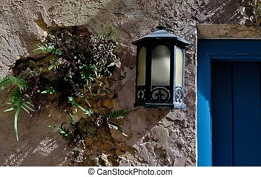 Fern Grows Next to Old Lamp