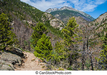 Fern Lake Trail with Stones Peak Mountain in the background
