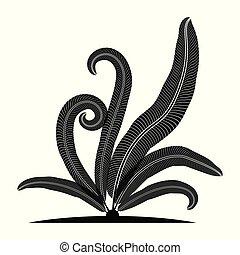 fern leaf silhouette tropical.