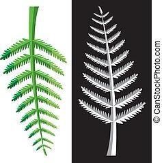 fern leaves - vector design of fern leaves