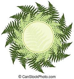 Fern leaves frame