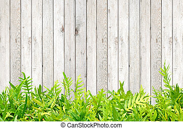 Fern leaves on wood background