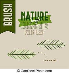 Fern nature jungle
