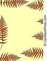 Ferns of Autumn