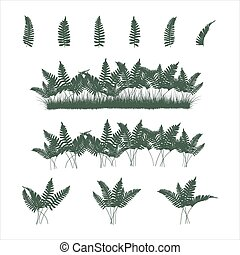 ferns set in flat colors