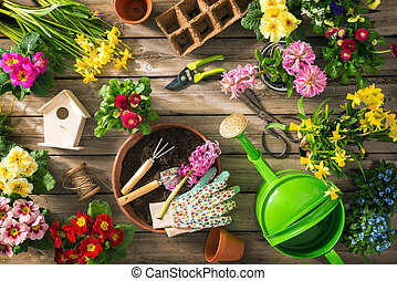 ferramentas ajardinando, e, flores mola