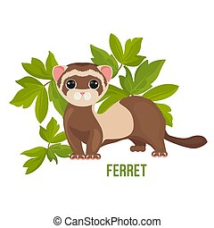 Ferret animal with wide open eyes in green leaves vector...