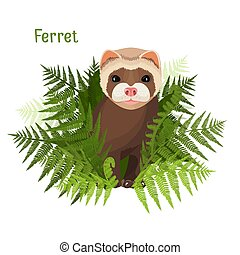 Ferret in green leaves of fern, polecat cute friendly animal...
