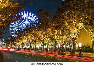 Ferris wheel at Port of Kobe