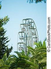 Ferris wheel in the city park.