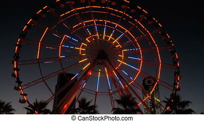 Ferris Wheel Lights at Night and Palm Trees. Neon colored...