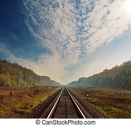 ferrocarril, a, horizonte, en, bosque, en, otoño, debajo, nubes, en, cielo dramático