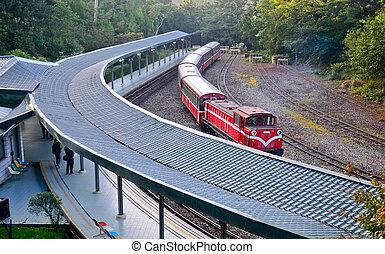 ferrocarril, de madera, parque, taiwán, alishan, estación, ...