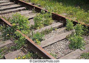 ferrocarril, olvidado
