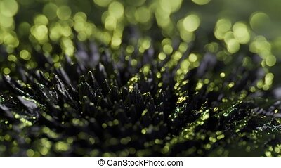 Ferrofluid Background Elements - The natural phenomenon of...