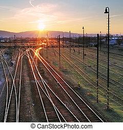 ferrovia, com, trem, em, pôr do sol, e, muitos, linhas
