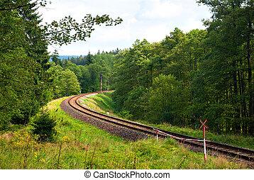 ferrovia, in, il, legnhe
