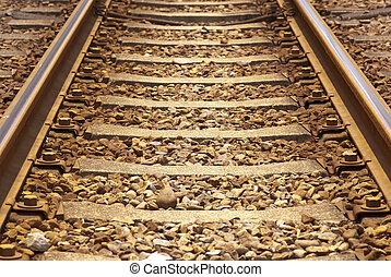 ferroviaire,  train, rouillé, fer
