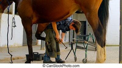 fers cheval, jambe, mettre, cheval, 4k, femme