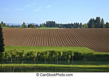 Fertile field organized and plowed Oregon.