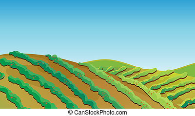 Fertile land - Illustration of a fertile land with growing...