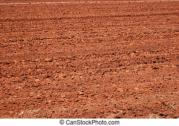 Fertile land - Land prepared for planting