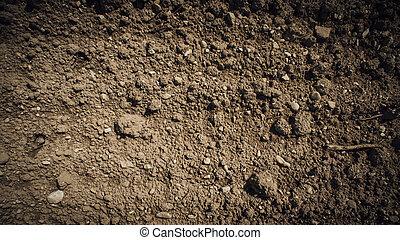 Fertile humus soil in the farmland field, texture close up
