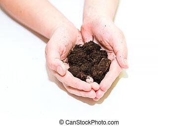 Fertile soil in hands