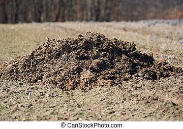 Fertilizer dung on a field