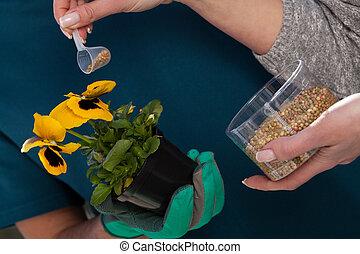 Fertilizer for a young plant