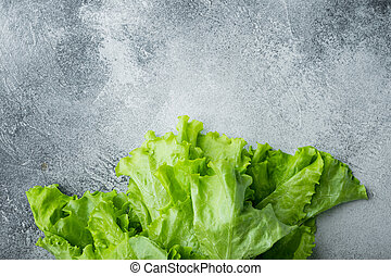 Fesh green lettuce salad organic leaves, on gray background