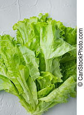 Fesh green lettuce salad organic leaves, on white background