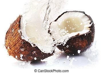 fesso, noce di cocco, con, schizzo