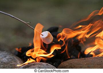 festa, marshmallow