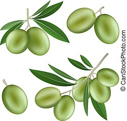 Festival olives oil icon set, realistic style