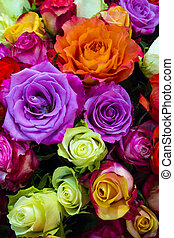 festive background of roses