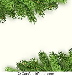 Festive background with branches of spruce