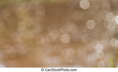 Festive blur background. Abstract twinkled bright background wit