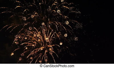 Festive colorful fireworks on dark background