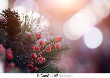 Festive fir branches with berries - Festive fir branches...
