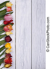 Festive frame of flowers tulips