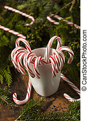 Festive Peppermint Candy Canes