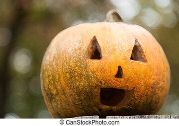festive yellow pumpkin on Halloween