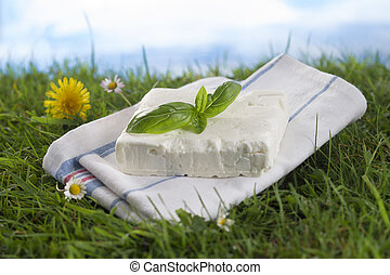 Feta cheese with fresh herbs. on the grass over blue sky